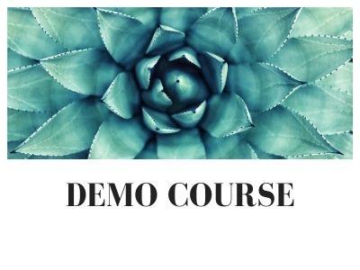 Demo Course